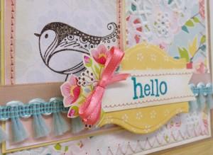 hello bird 2