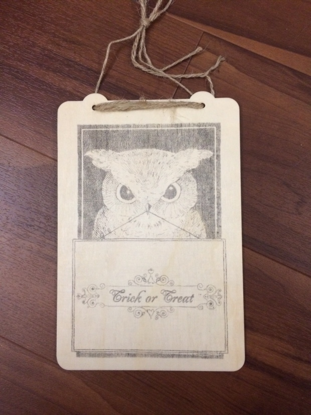 Too Cute to Spook Owl Wall Hanging with Crafty Secrets